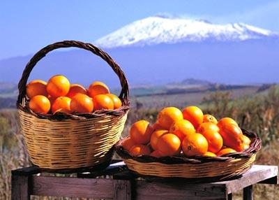 come avviare un ecommerce e vendere arance di sicilia